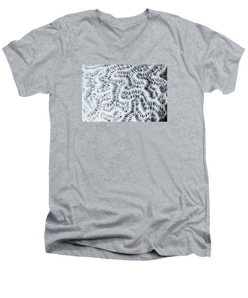 Dead Brain Coral Men's V-Neck T-Shirt