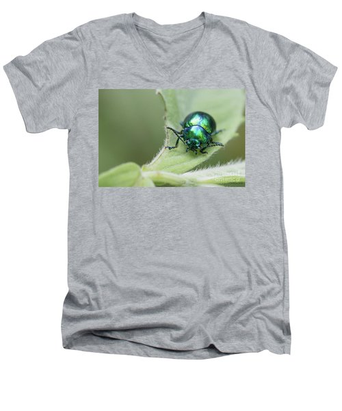 Dead-nettle Leaf Beetle - Chrysolina Fastuosa Men's V-Neck T-Shirt