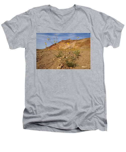 Death Valley Superbloom 202 Men's V-Neck T-Shirt by Daniel Woodrum