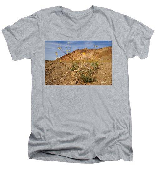 Death Valley Superbloom 202 Men's V-Neck T-Shirt