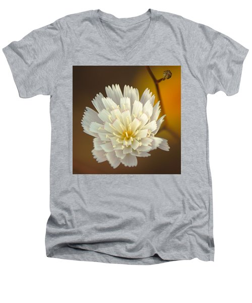 Death Valley Superbloom 203 Men's V-Neck T-Shirt by Daniel Woodrum