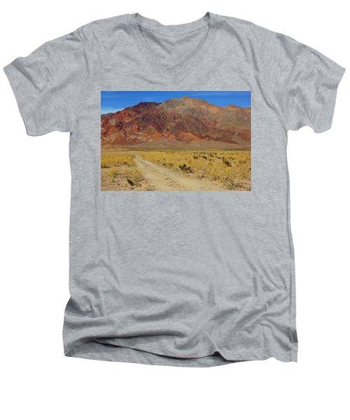 Death Valley Superbloom 205 Men's V-Neck T-Shirt
