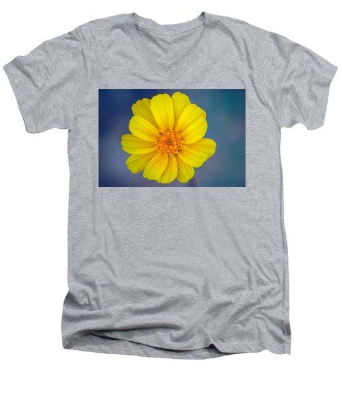 Death Valley Superbloom 403 Men's V-Neck T-Shirt by Daniel Woodrum