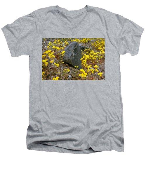 Death Valley Superbloom 406 Men's V-Neck T-Shirt