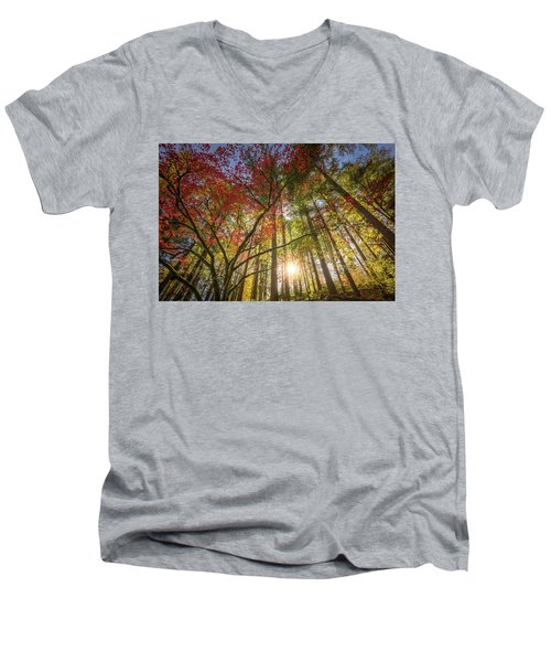 Decorated By Japanese Maple Men's V-Neck T-Shirt