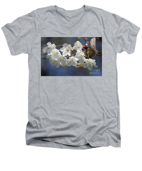 Deep Blue  Cherry Blossom Men's V-Neck T-Shirt