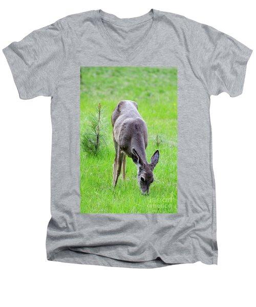 Deer In The Field Men's V-Neck T-Shirt by Debby Pueschel