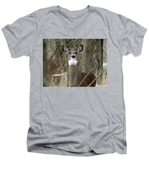 Deer In The Forest Men's V-Neck T-Shirt