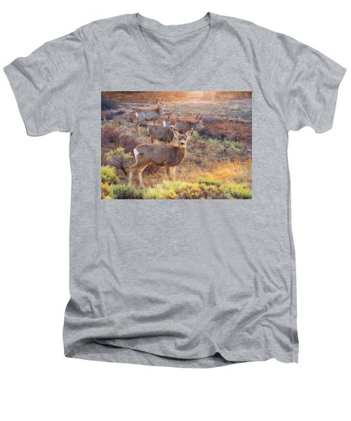 Men's V-Neck T-Shirt featuring the photograph Deer In The Sunlight by Darren White