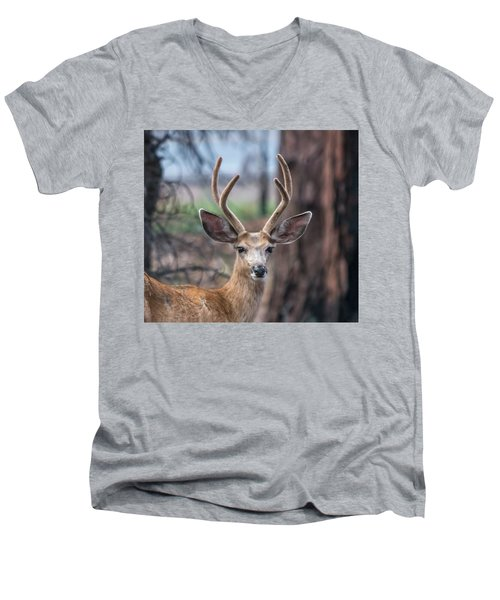 Deer Stare Men's V-Neck T-Shirt