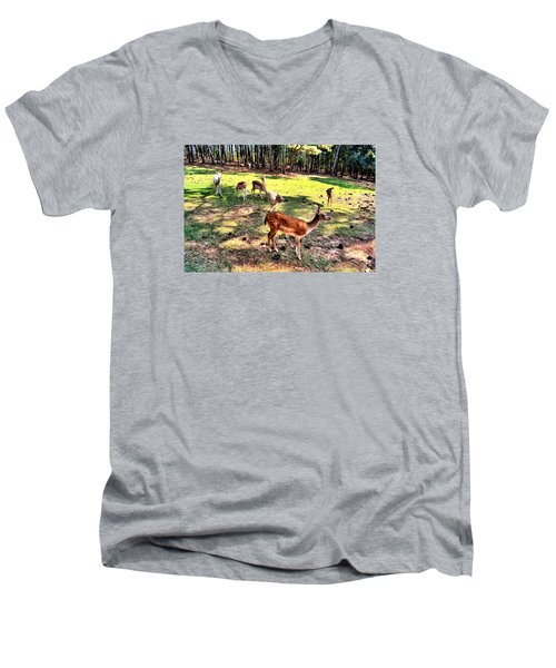 Deerfield Men's V-Neck T-Shirt by James Potts