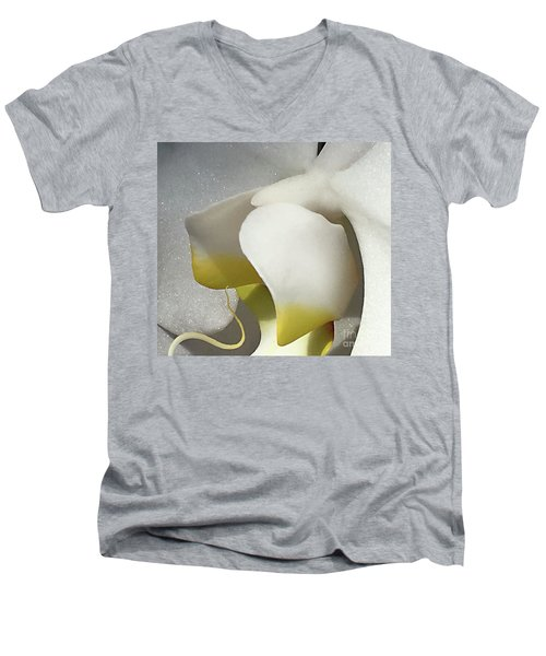 Delicate As Egg Yolk Men's V-Neck T-Shirt by Sherry Hallemeier