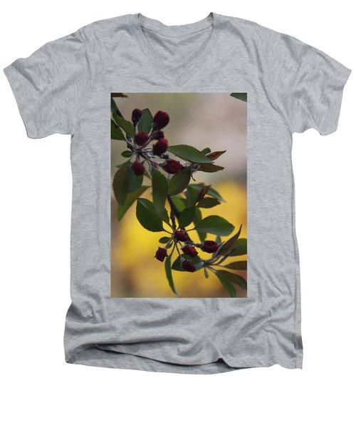 Delicate Crabapple Blossoms Men's V-Neck T-Shirt by Vadim Levin