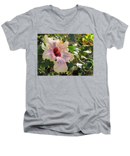 Delicate Expression Men's V-Neck T-Shirt