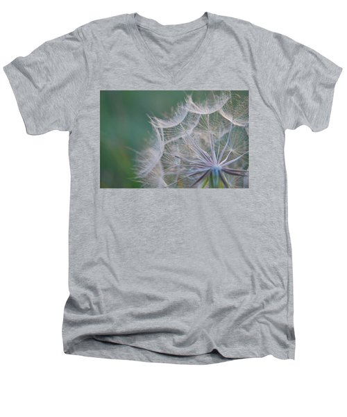 Delicate Seeds Men's V-Neck T-Shirt