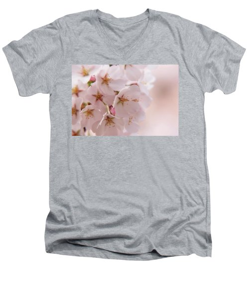 Delicate Spring Blooms Men's V-Neck T-Shirt