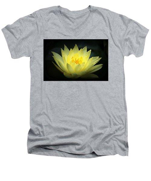 Delicate Water Lily Men's V-Neck T-Shirt by Lori Seaman