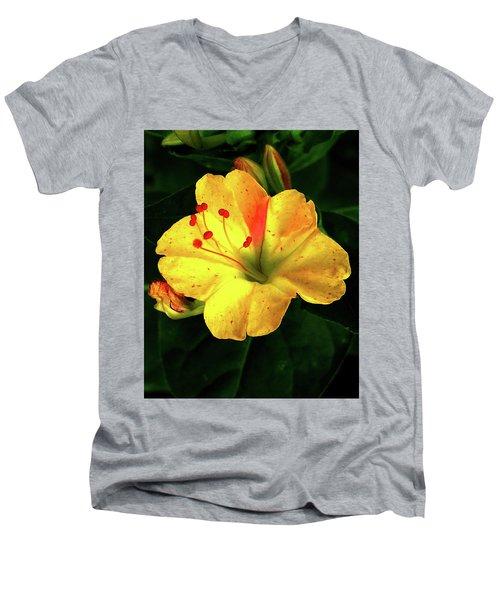 Delicate Yellow Flower Men's V-Neck T-Shirt