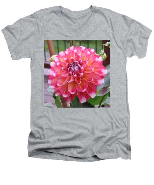 Denali Dahlia Men's V-Neck T-Shirt