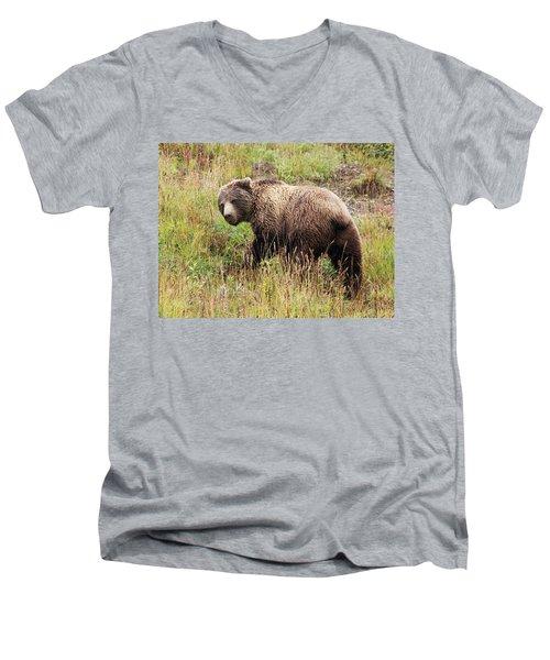 Denali Grizzly Men's V-Neck T-Shirt