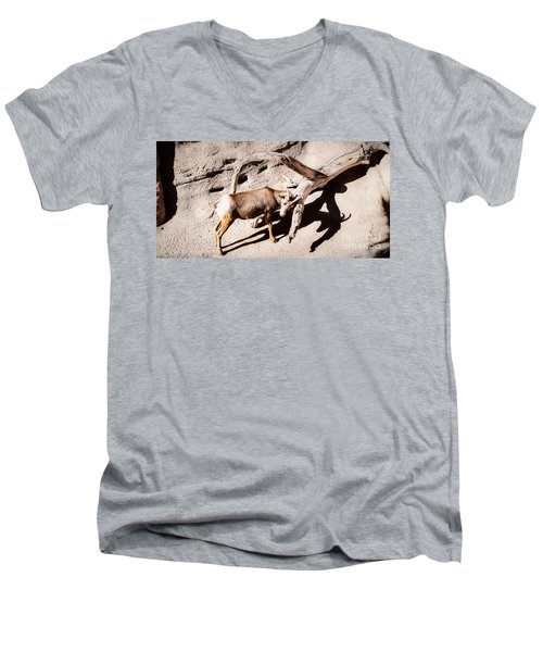 Men's V-Neck T-Shirt featuring the photograph Desert Bighorn Ram by Lawrence Burry