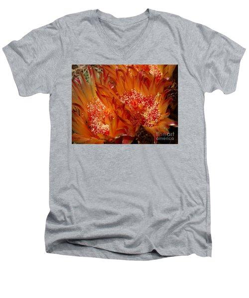 Desert Fire Men's V-Neck T-Shirt by Kathy McClure