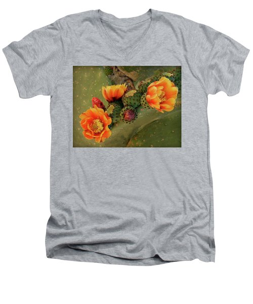 Men's V-Neck T-Shirt featuring the photograph Desert Flame by Lucinda Walter