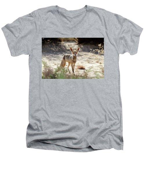 Men's V-Neck T-Shirt featuring the photograph Desert Fox by Arik Baltinester