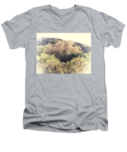 Desert Ironwood Afternoon Men's V-Neck T-Shirt