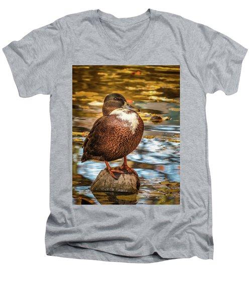 Desert Island Men's V-Neck T-Shirt