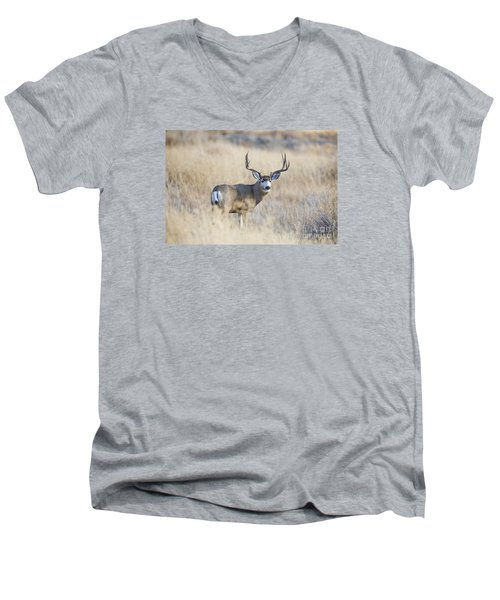 Desert King Men's V-Neck T-Shirt