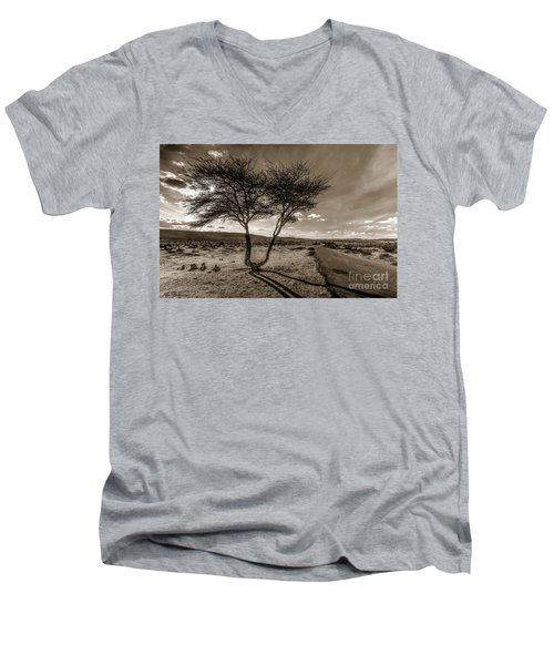 Desert Landmarks  Men's V-Neck T-Shirt