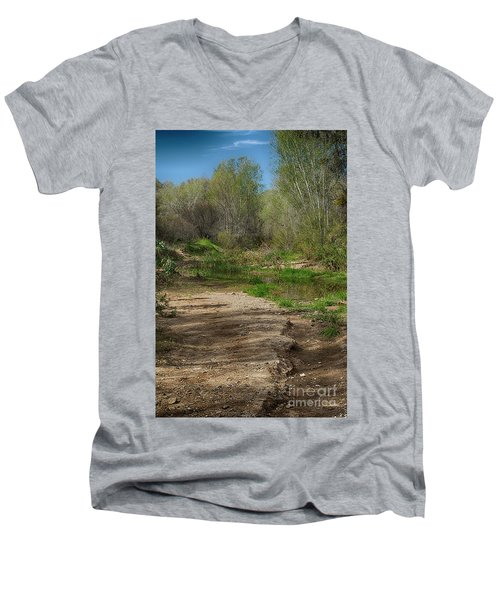 Men's V-Neck T-Shirt featuring the photograph Desert Oasis by Anne Rodkin