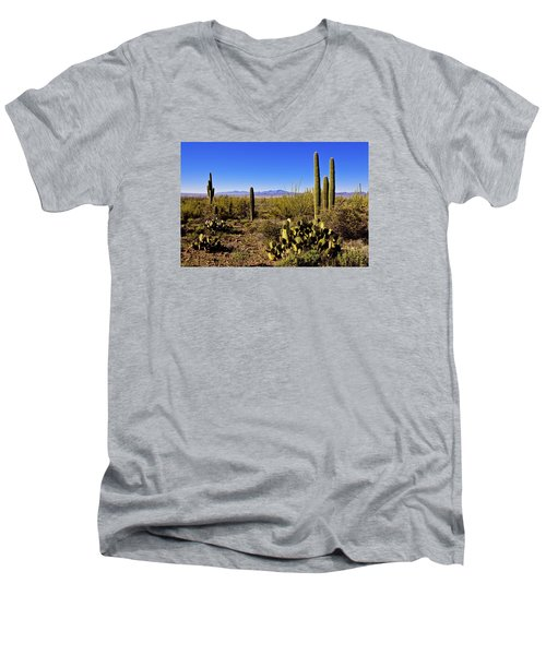 Desert Spring Men's V-Neck T-Shirt by Chad Dutson