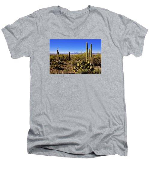 Desert Spring Men's V-Neck T-Shirt
