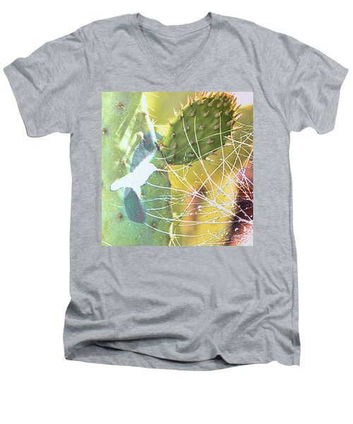 Desert Spring Men's V-Neck T-Shirt