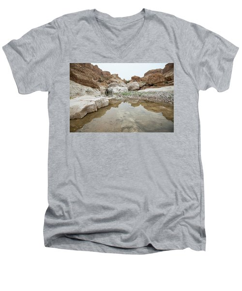 Desert Water Men's V-Neck T-Shirt