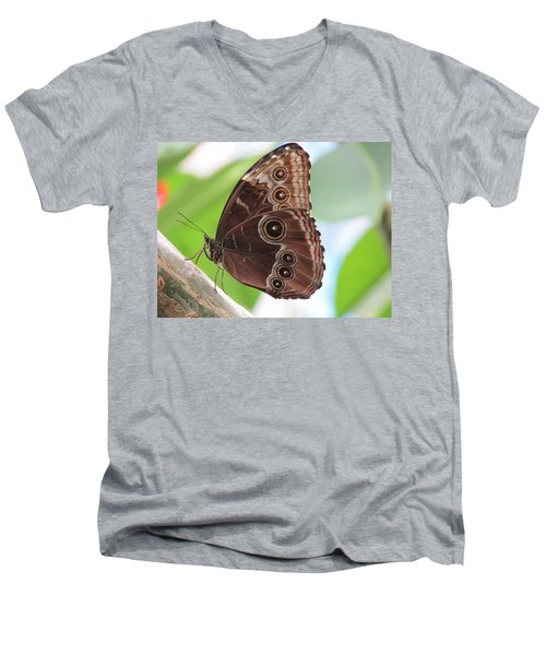 Detailed Wings Men's V-Neck T-Shirt