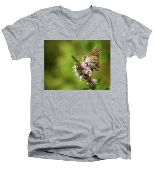 Deudorix Livia Men's V-Neck T-Shirt