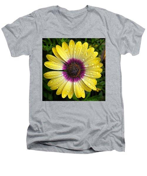 Dew Dropped Daisy Men's V-Neck T-Shirt
