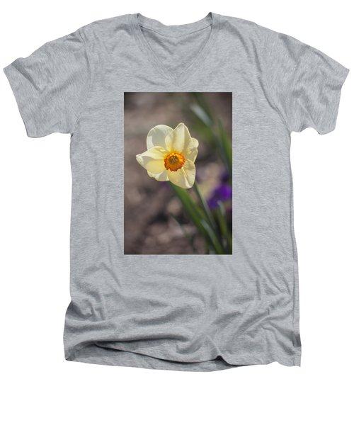 Diagonal Daffy Men's V-Neck T-Shirt