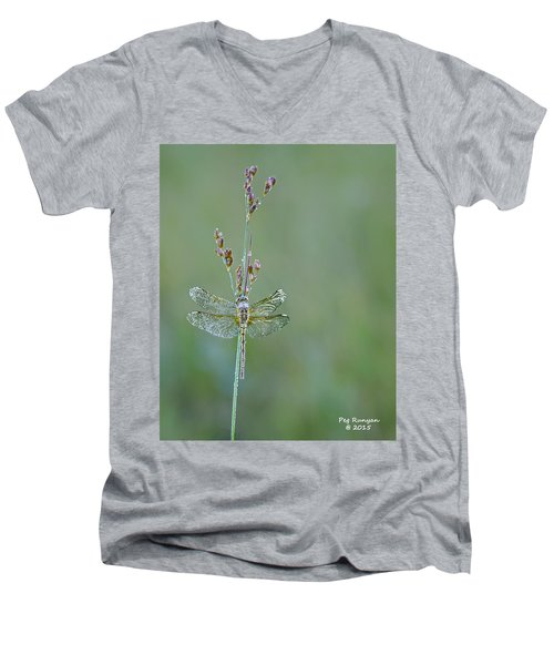 Diamond Dragonfly Men's V-Neck T-Shirt