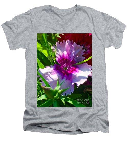 Dianthus Carnation Men's V-Neck T-Shirt