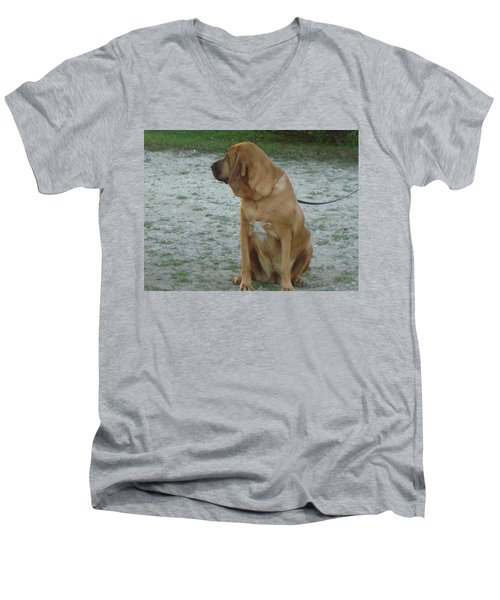 Did You Hear That? Men's V-Neck T-Shirt by Val Oconnor