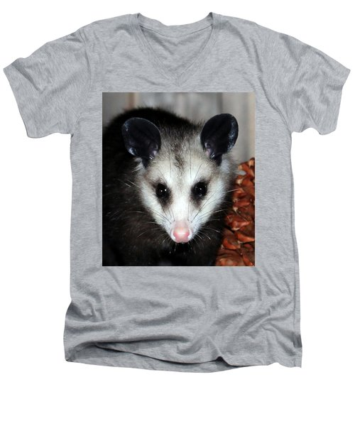Dining Possums Vii Men's V-Neck T-Shirt