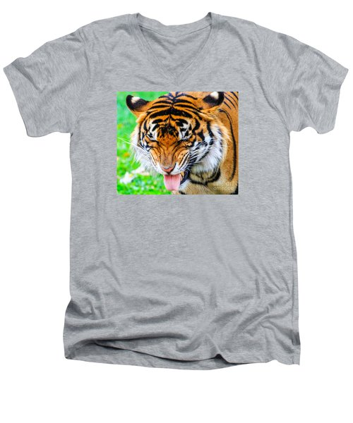 Disgusted Tiger Men's V-Neck T-Shirt