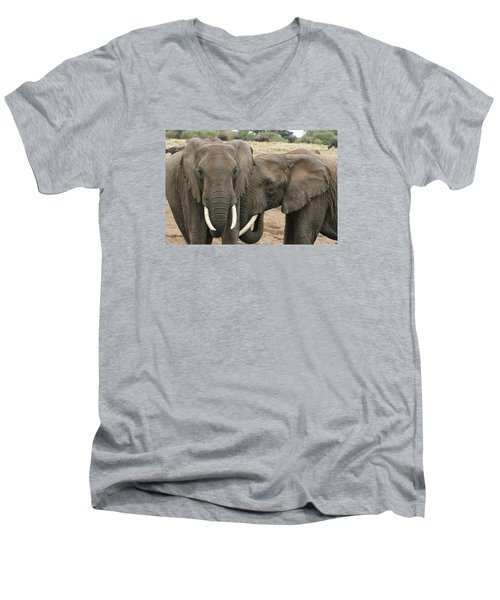 Men's V-Neck T-Shirt featuring the photograph Display Of Affection by Gary Hall