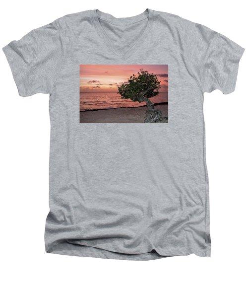 Divi Divi Aruba Men's V-Neck T-Shirt