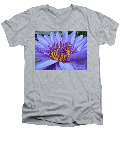 Divine Men's V-Neck T-Shirt