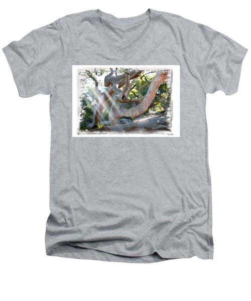 Do-00044 Mount Ettalong Men's V-Neck T-Shirt